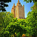 Central Park by Mike Martin