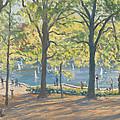 Central Park New York by Julian Barrow