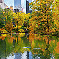 Central Park Pond Autumn Reflections by Regina Geoghan