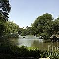 Central Park Pond by Madeline Ellis