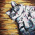 Chachi Cat Portrait by Bridget Brummel