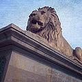 Chain Bridge Lion by Joan Carroll
