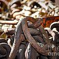 Chain Picking by Gwyn Newcombe