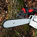 Chainsaw And Gloves by Christian Lagerek/science Photo Library