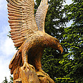 Chainsaw Carved Eagle by Brenda Kean