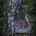 Chair And Flowers by Ken Frischkorn