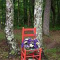 Chair Of The Grand Elf by Douglas Barnett