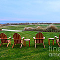 Chairs At The Eighteenth Hole by Catherine Sherman