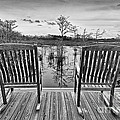 Chairs by Bruce Bain