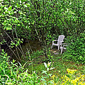Chairs By The Creek In Summer by Duane McCullough