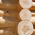 Chalet Logs by Valerie Kirkwood