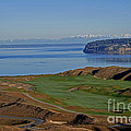 Chambers Bay Golf Course - University Place - Washington by Yefim Bam