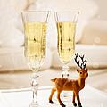 Champagne At Christmas by Amanda Elwell