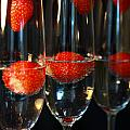 Champagne Cocktail Trio by Jacqueline Moore