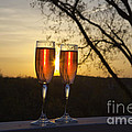 Champagne Sunset by Kay Pickens