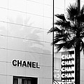 Chanel On Rodeo Drive by Ronnie Caplan