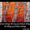 Change by Don Schwartz