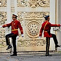 Change Of Guards Ceremony Dolmabahce Istanbul Turkey by Imran Ahmed