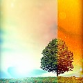 Change Of The Seasons - The Moment When Summer Meets With Fall by Lilia D