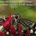 Change The Way You Look At Things by Pharaoh Martin