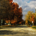 Changing To Fall Colors In Dwight Il by Thomas Woolworth