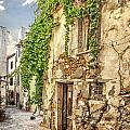 Chania Old Street by Sophie McAulay