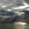 Channel Sunburst by Callan Art