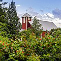 Chapel At The Antique Rose Emporium by David Morefield