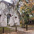Chapel Of Ease Ruins And Mausoleum St. Helena Island South Car by Dawna Moore Photography