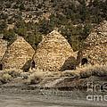 Charcoal Kilns #4 by Dan Hartford