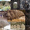Charcoal Kilns by David Salter