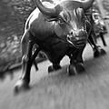 Charging Bull 2 by Tony Cordoza