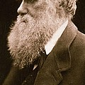 Charles Darwin by Julia Margaret Cameron