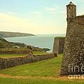 Charles Fort Kinsale by Jeremy Hayden