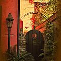 Charleston Garden Entrance by Kathy Baccari