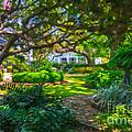 Charleston Sc Gardens by Dale Powell