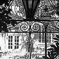 Charleston Gateway II In Black And White by Suzanne Gaff