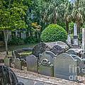 Charleston Graveyard by Dale Powell
