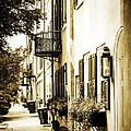 Charleston by Karol Livote