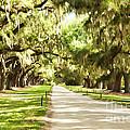 Charleston by Linda Blair