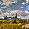 Charleston Marsh View by Dale Powell