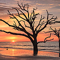 Charleston South Carolina Edisto Island Beach Sunrise by Carol VanDyke