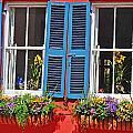 Charleston Windows by Elvis Vaughn