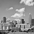 Charlotte Skyline In Black And White by Jill Lang