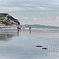 Charmouth Beach 2 by Susie Peek