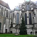 Chartres Cathedral by Deborah Smolinske