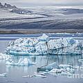Chasing Ice by Evelina Kremsdorf