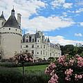 Chateau Chenonceau by Pema Hou