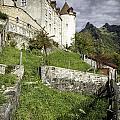 Chateau De Gruyeres by Timothy Hacker