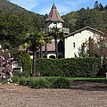 Chateau St. Jean Winery 5d22209 by Wingsdomain Art and Photography
